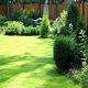 Озеленение сада: вертикальный подход